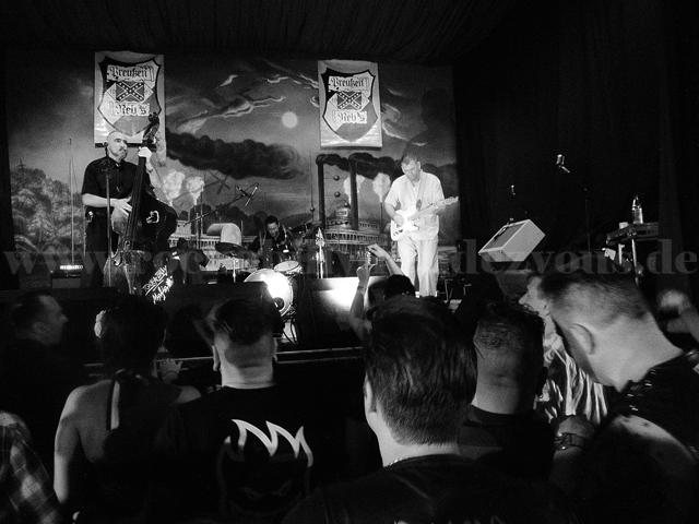 brandenburger2013-rockabillymafia2