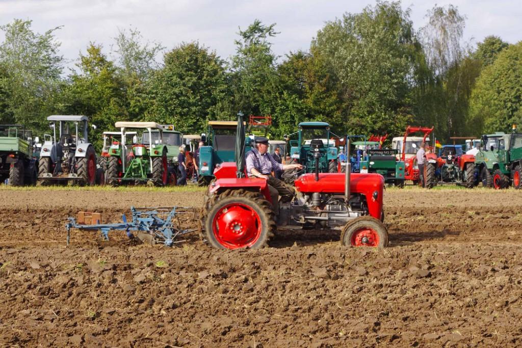 Traktorentreffen Kiekeberg- Bild FLMK